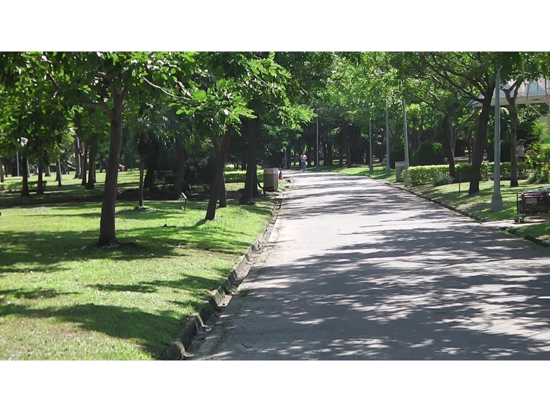 【Taipei】Daan Forest Park