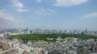 How to go to Shinjuku Gyoen National Garden? Analyze the three major exports no longer get lost!