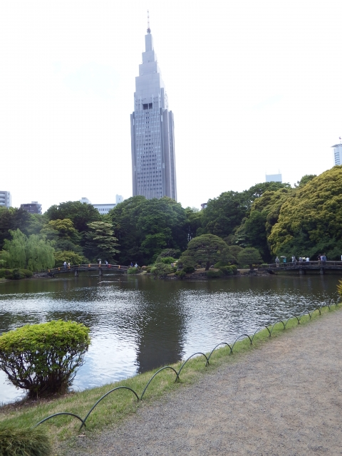 【Sightseeing】Shinjuku Gyoen National Garden