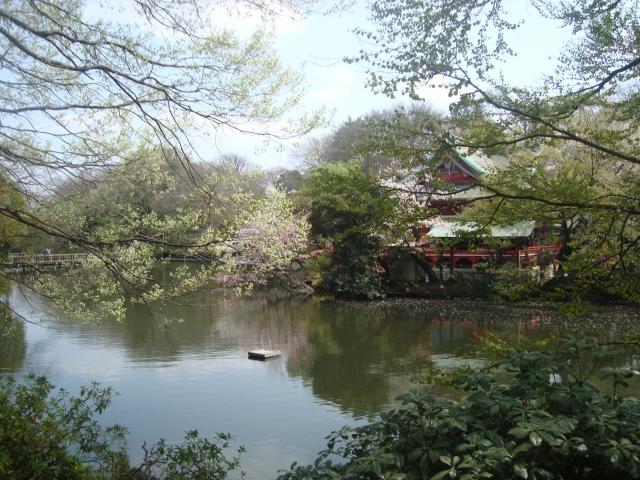 【Tokyo】Inokashira park