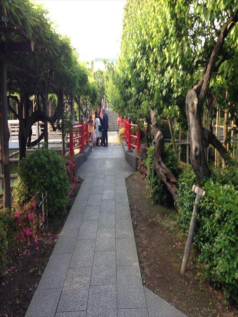 【Sightseen】Kameido Tenjin Shrine