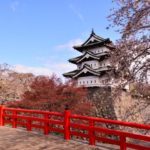 Going to Japan's best-known cherry blossom viewing spot – Aomori Hirosaki